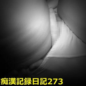 ●漢記録日記 273【後編】