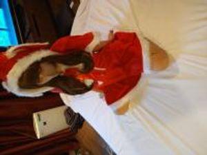 ※期間限定12月9日まで【目線なし】可愛いサンタクロースが、淫乱だったらいいなぁ☆という思いを主観で楽しめるように撮ってみました。