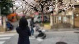 【個撮】普通文学少女②花見の後パンツを脱ぎそのままホテルでハメ撮り